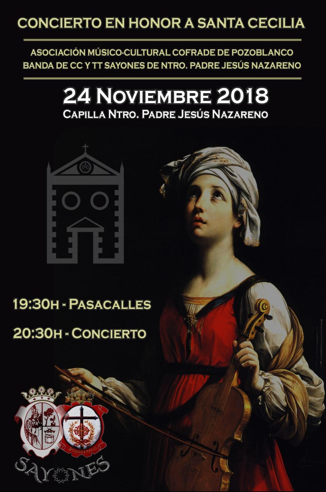 Concierto en honor a Santa Cecilia - Sayones